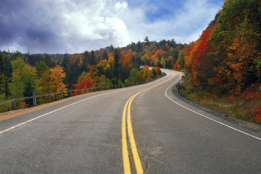 country highway fall